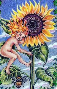 The Flower Speaks - Sunflower