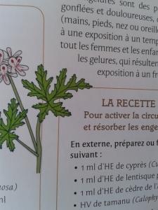 Petit larousse des HE p. 247 (extrait)