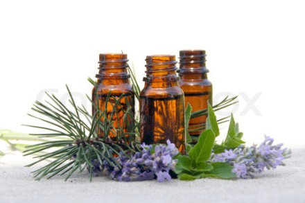 Aroma Oil in Bottles with Lavender, Pine and Mint