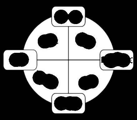 Croix_des_éléments