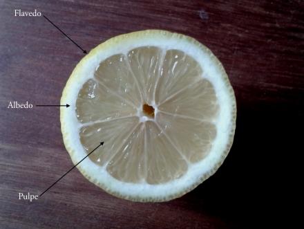 Citron_tranche_1