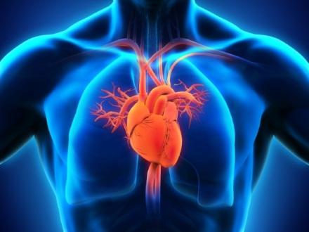 cardiology-procedures